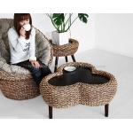 water hyacinth sofa set ( WASF-036 )