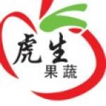 china export onion