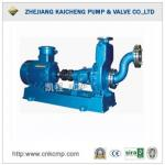 Self-Suction Chemical Pump