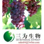 resveratrol,Grape Skin Extract (sales04@3wbio.com)