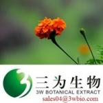 Lutein Marigold Extract (sales04@3wbio.com)