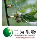 Rubusoside, Sweet Tea Leaf Extract (sales04@3wbio.com)
