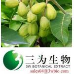 Gallic acid Terminalia bellerica P.E.(sales04@3wbio.com)