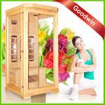 Home Sauna GW-107