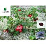 Bilberry Extract(sales05@3wbio.com)