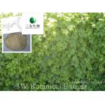 Gynostemma Powder Extract(sales05@3wbio.com)