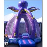 Gaint Octopus Bounce House with CE, En, SGS Approved (XZ-BH-058)