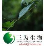 Rabdosia japonica Hara (sales04@3wbio.com)