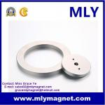 Permanent NdFeB Rare Earth Circle/ Ring Permanent Speaker Magnet