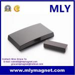 Rare Earth Arc Segment Neodymium Magnet for Mv Wind Generator