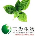 100% natural Peppermint Powder (sales04@3wbio.com)