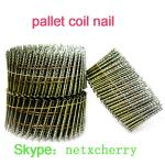 coil nail