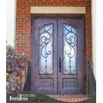High quality ornamental door