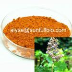 Macleaya Cordata Extract 60% Alkaloids