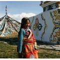 Je veux voyager en Chine au  moment de la fête du Printemps