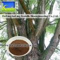 White Willow Bark Extract (10%-98%Salicin)