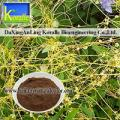 Dodder Seed Extract Powder(10:1,20:1)