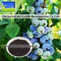 Blueberry Extract(Anthocyanin 5%-70%)