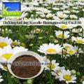 Feverfew Extract (0.4%-3%Parthenolide)
