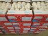 white garlic to Germany