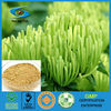 5%-20% Chlorogenic Acid (CGA)