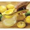 lemon squeezer/Lemon Squeezer / Lemon Juicer,material:AS,plastic lemon squeezer
