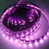 LSL-5050-B LED strip lamp