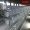 INNAER supply high quality egg layer chicken cages for layer poultry farm 0086-18231821782