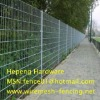 Green PVC Wleded wire Fencing (ISO 9001)