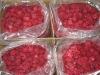 Iqf Raspberry (Grade A 2.5kg*4)