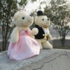 wedding decorative stuffed teddy bear