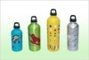 sports bottle, nordic walking pole and ski pole