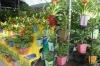 Beautiful Modern Square Plastic Flowerpot