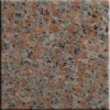 G562 maple red white base China red granite slab