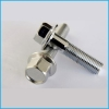 Stainless flange Bolts(hexagon bolts with flange)