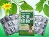 shuiguozhiwu slimming product