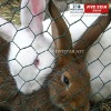 Rabbit Netting,Hexagonal Wire Netting