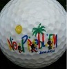 Wholesale 3d golf ball printer