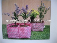 decorative mini flower plant pots indoor