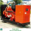 biogas generator/biogas engine generator/biogas electric generator