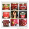 70g canned tomato paste ,export to Africa