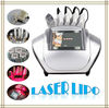 New Arrival Diode Laser Fat Removal Machine with 6 Probes