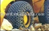 sell tire protection chain 2700-49
