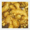 2012 fresh 200g and up-chinese fresh ginger