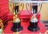 plastic trophy cup, trophy cup, trophies