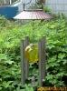 solar light /solar  windbell light