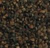 China Black Buckwheat Crop 2011