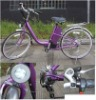 E Bike (KD-J01)