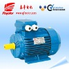 Y2 series 3 phase squirrel cage induction motor