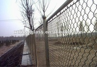 High Quality Electro Galvanized Square Wire Mesh
